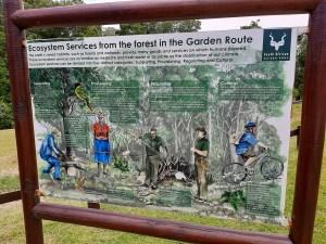 Destination Garden Route - SANParks remains open, covid-19