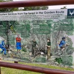 Destination Garden Route - SANParks remains open, covid-19