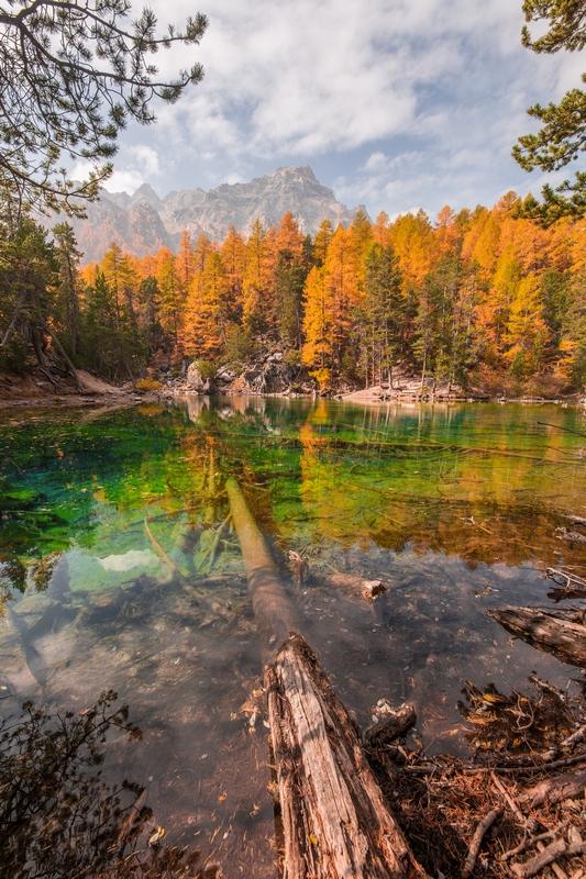 Lac vert automne
