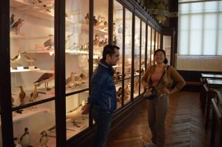 Giancarlo s'improvise guide du musée pour Mao