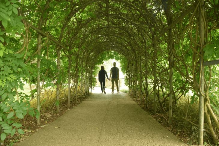 botanic gardens in curitiba