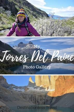 Torres del Paine pin