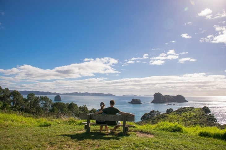 the lookout at the top of the hill on the walk to cathedral cove, new zealand