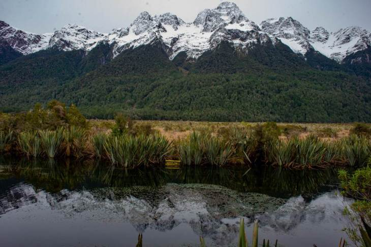 mirror lakes is a perfect stop on any trip from queenstown to milford sound