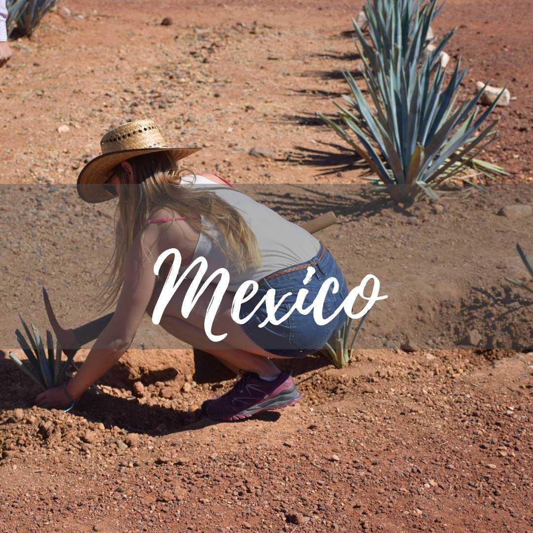 Mexico Travel Blogs by Destinationless Travel