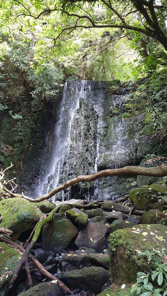 Matai falls Catlins