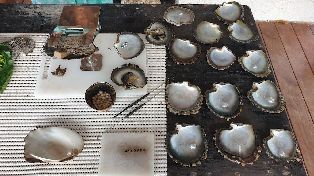 Huahine Pearl Farm & Pottery