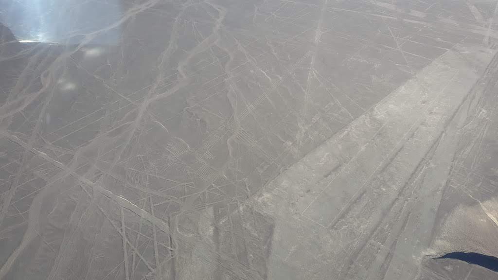 alcatraz Nazca