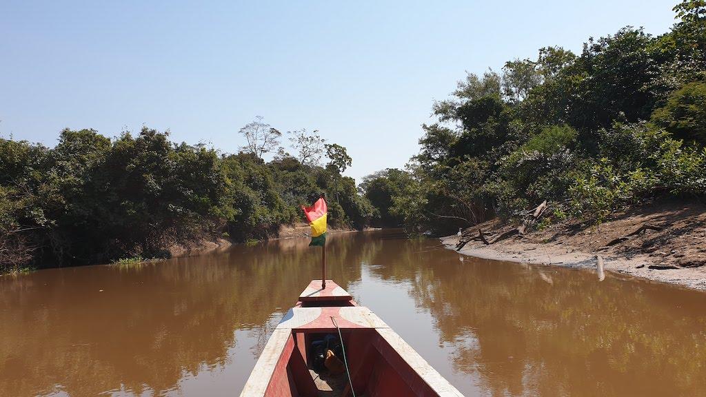 Pampa Amazonie
