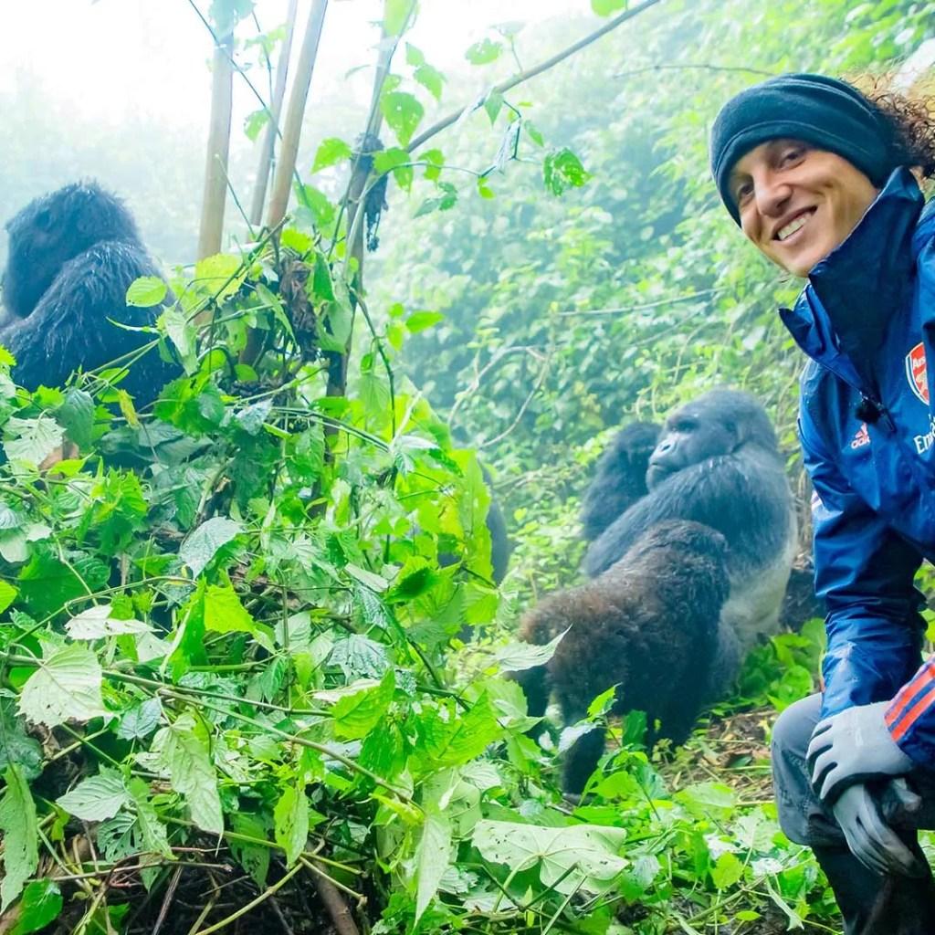 Is gorilla trekking worth it, best time for a gorilla trip to uganda
