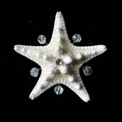 Crystal Starfish Boutonniere