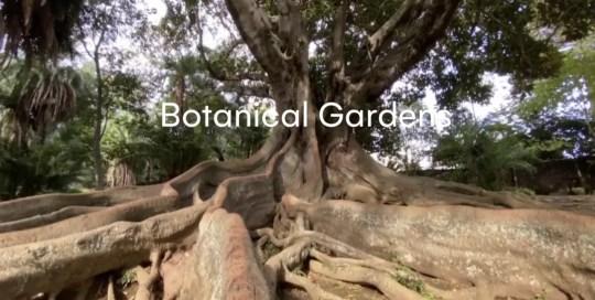 Azores – Botanical Gardens