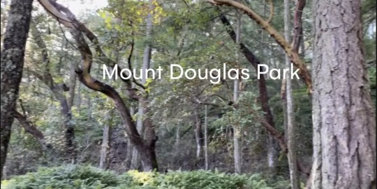 Victoria – Mount Douglas Walk
