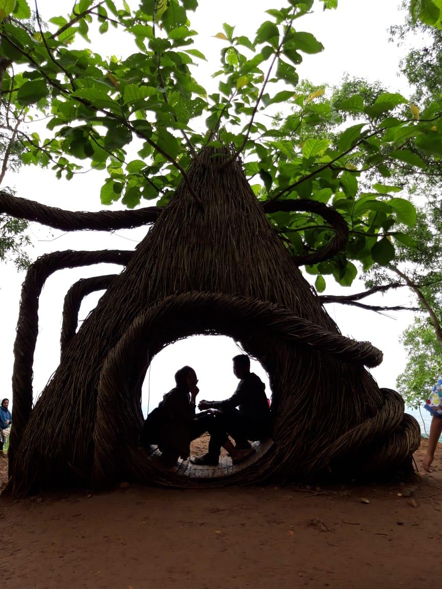Spot Foto Terbaik Hutan Pinus Pengger