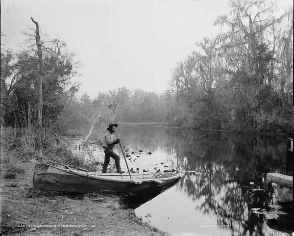 Rice Creek Near Browns Landing
