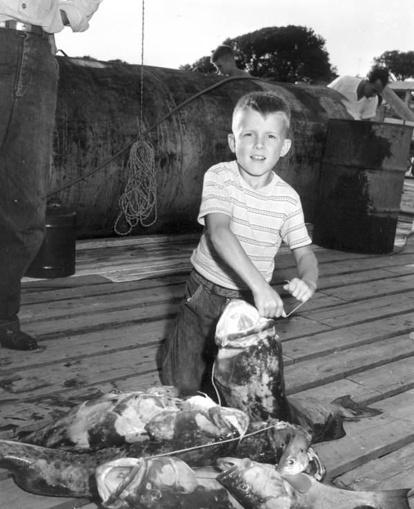 Little Kid Fish