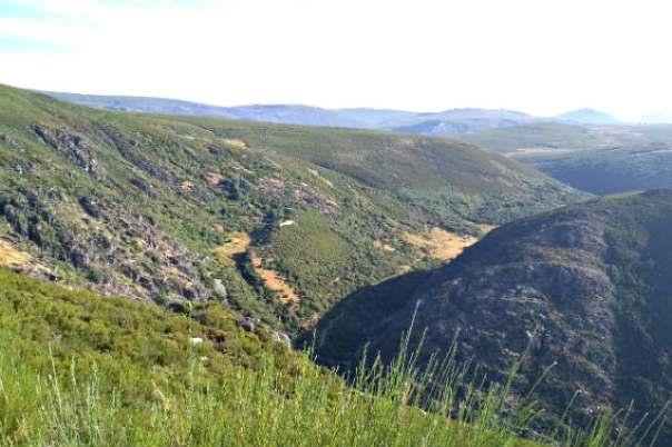 Vistas desde el cañón de Forcadura - Imagen de loboshaggy