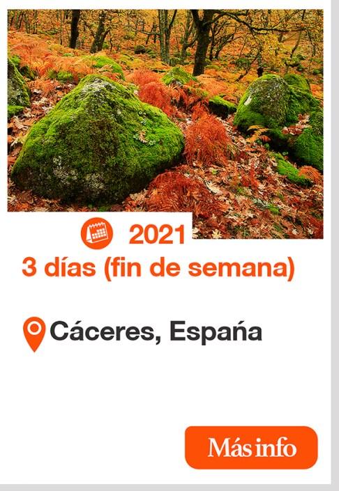 2021 TALLER FOTOGRAFÍA DE OTOÑO EN LA VERA