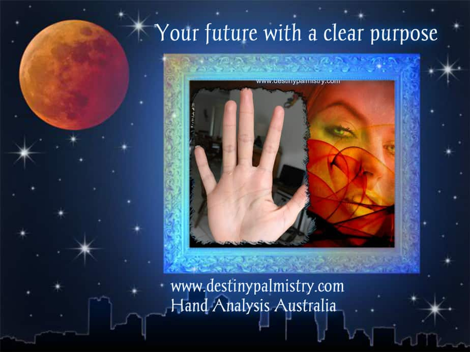 learn palmistry professional palm reader sari puhakka