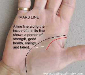 life line and mars line marks on the palm meanings, palmistry by sari puhakka, master palmist, professional palm reader