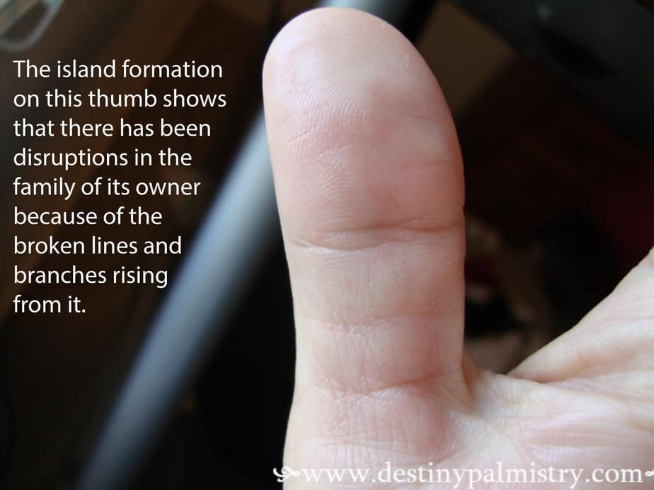 thumb lines meaning palmistry