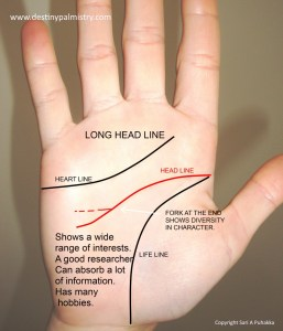 long head line meaning, best palm reader in the world, who is the best palm reader in the world?, the best palm reader in Australia, the best palm reading website in the world, professional palm reader, master palmist,