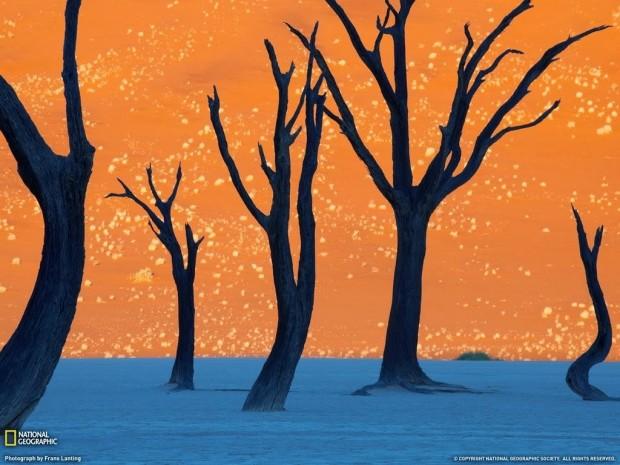 The-orange-Sossusvlei-sand-dunes-in-Namibia