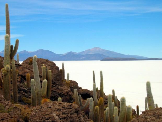 Isla-Pescado-Bolivia
