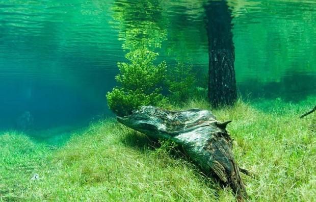 lac-austria4