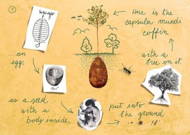 868636_biodegradable-burial-pod-memory-forest-capsula-mundi-3-Optimized