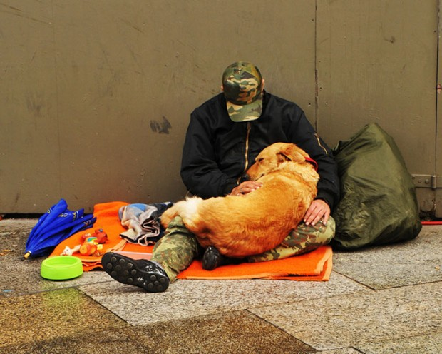 homeless-dogs-unconditional-love-best-friend-301__700