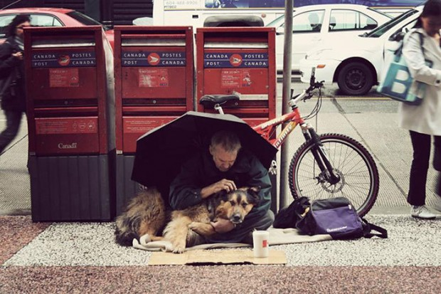 homeless-dogs-unconditional-love-best-friend-45__700