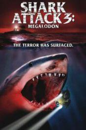 shark-attack-3
