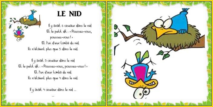 Le nid – Vers les maths MS