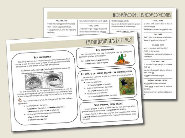 1 Annee Complete De Vocabulaire En 6 Lecons Cm1 Cm2