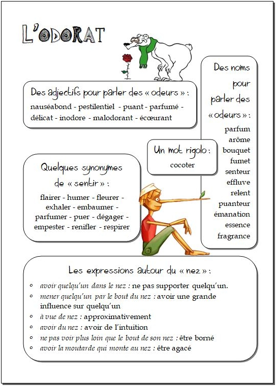 Champ lexical de l'odorat