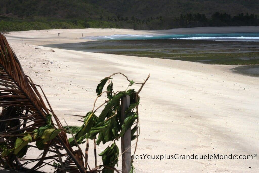 5 plages de Lombok à ne pas manquer - Plage de Mekaki à Lombok