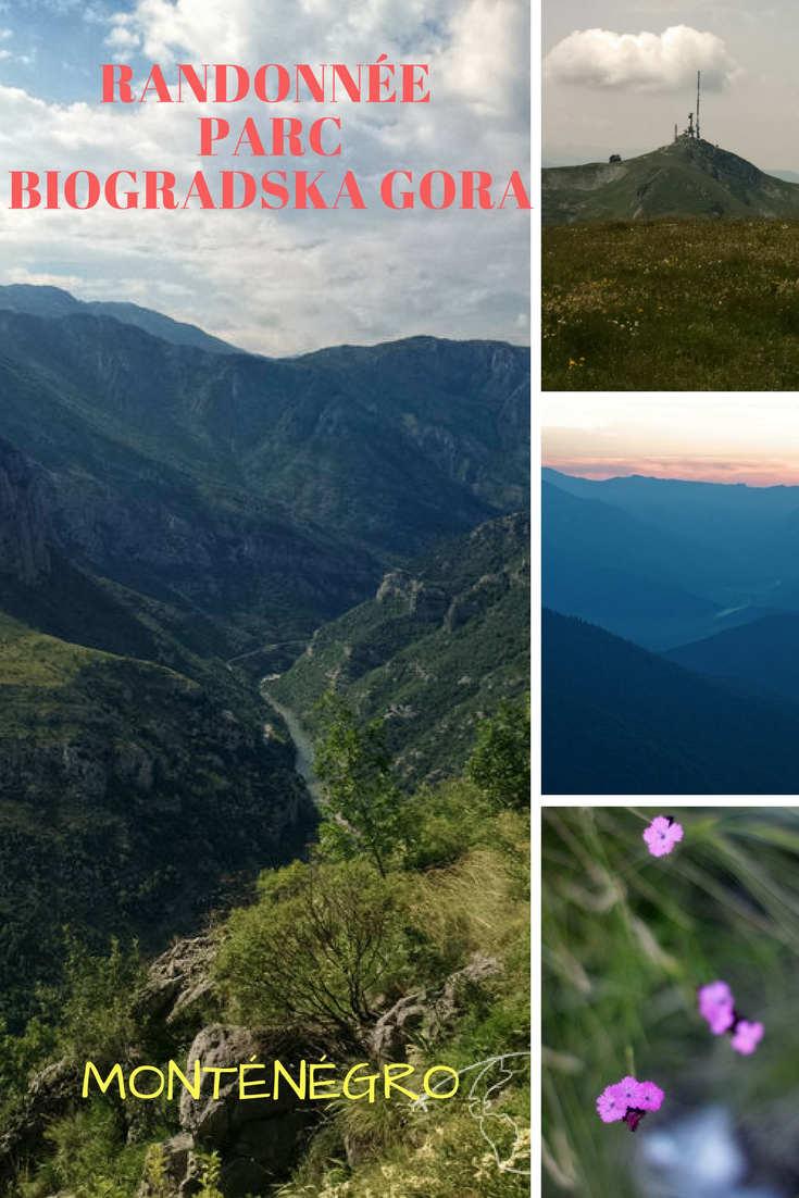 Randonner dans le Parc Biogradska Gora au Monténégro:  les infos pour vous organiser, des bons plans et des photos.