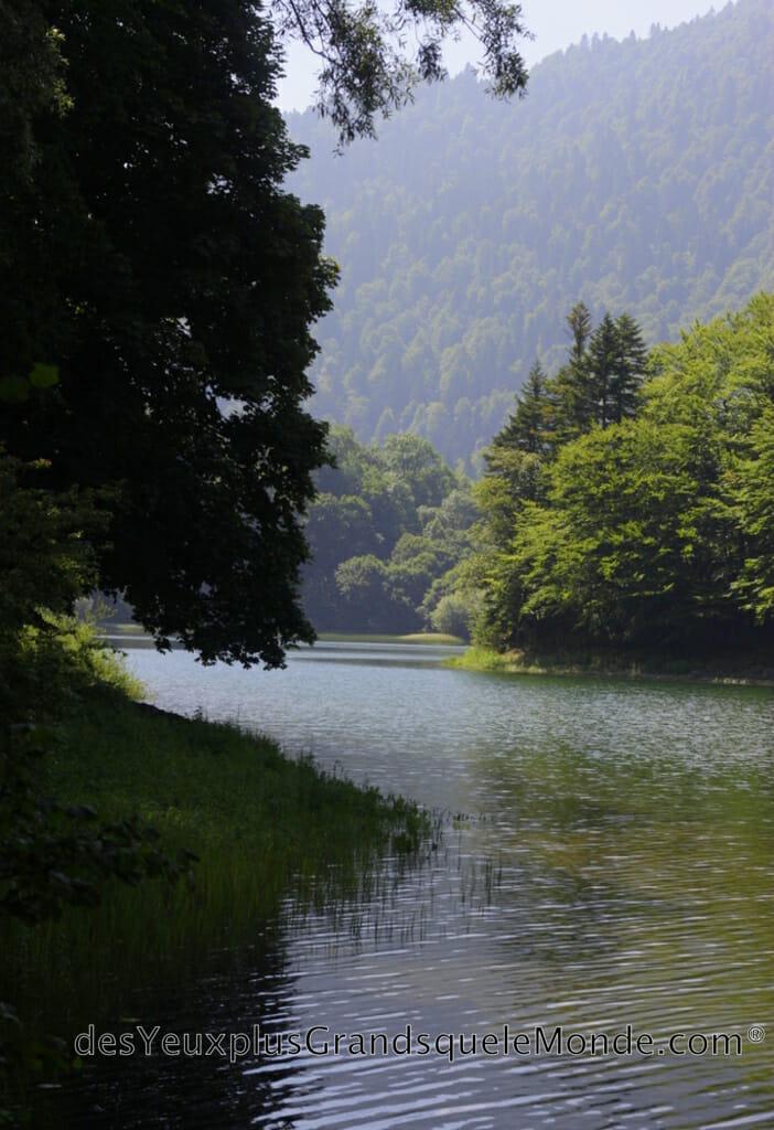Randonner dans le Parc Biogradska Gora au Monténégro - Tour du Lac