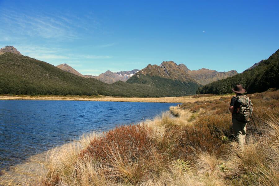 Murchison en NZ : mission Takahé dans les montagnes interdites
