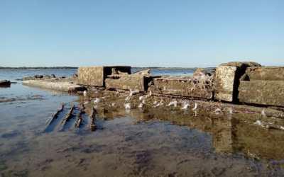 Les villages engloutis du Lac du Der #enFranceaussi