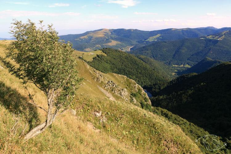 Autour de Corcieux - Paysage du Col de la Schlucht