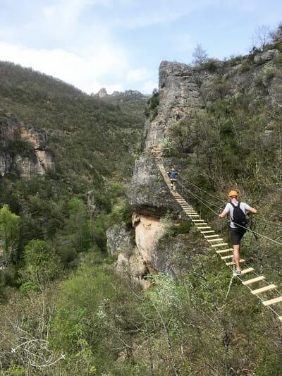 Pont de Singe avec Roc et Canyon