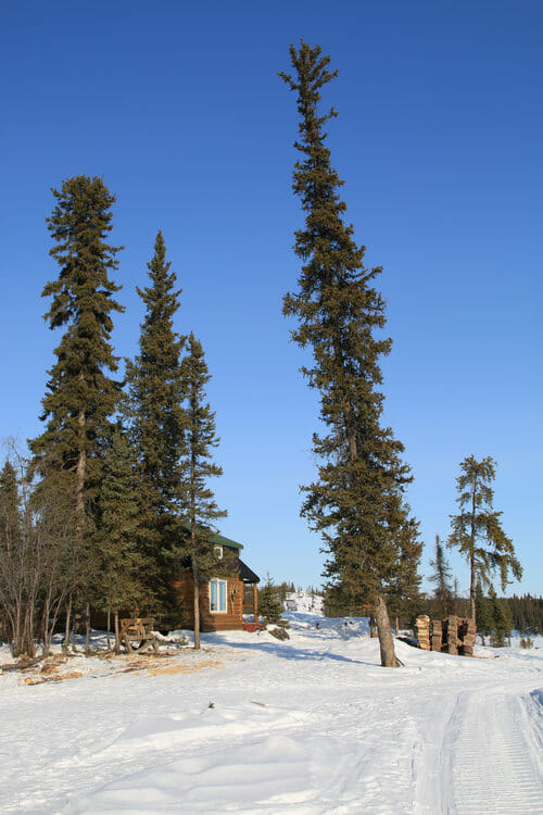 Chalet sur le site de Blachford Lake Lodge