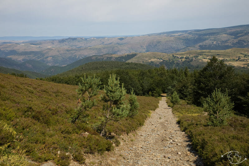 Chemin de Stevenson - Après le Serre de Mijavols