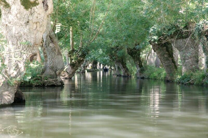 Conche du Marais Poitevin