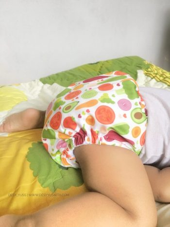 Product Information Little Hippo Cloth Diapers