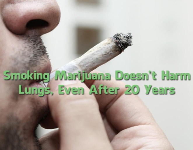 Smoking-Marijuana-Doesnt-Harm-Lungs-Even-After-20-Years-660x514