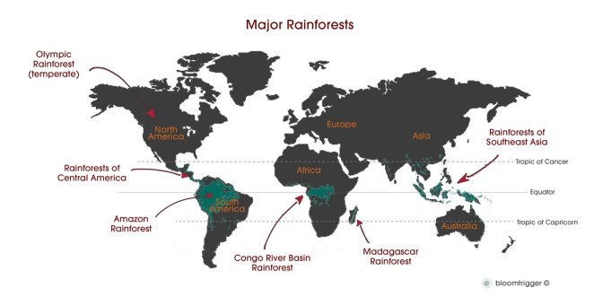 world-map-major-rainforest