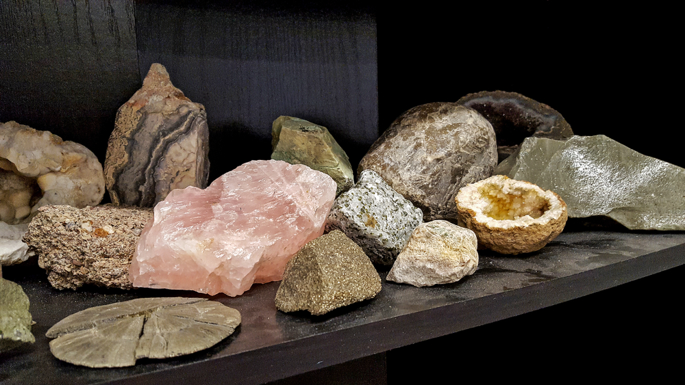 rock collection display ideas